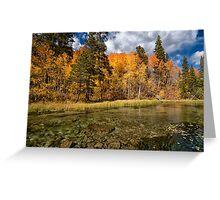 Bishop Creek Fall Colors Greeting Card