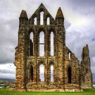 Whitby Abbey Remains by Tom Gomez