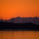Wind turbines  by raymona pooler