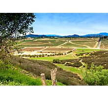 Temecula Wine Country Photographic Print
