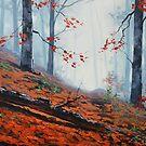 Forest Floor by Graham Gercken