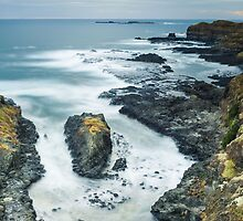 The Nobbies, Phillip Island by WavesPhotograph