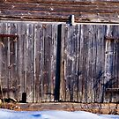 Door to an old boathouse by marina63