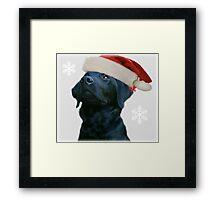 Santa Dog Framed Print