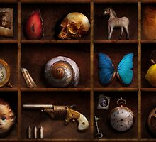 Steampunk - A box of curiosities by Mike  Savad