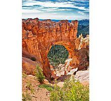 Doorway to beauty Photographic Print