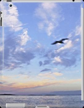 Dusk over Northumberland coast England by Phillip Shannon