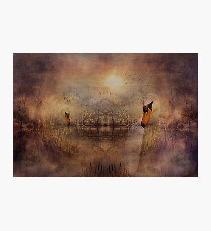 Being Still for Love Photographic Print