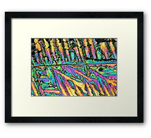 Bismuth chloride crystals under the microscope. Framed Print