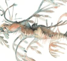 Seadragon Sticker