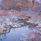 Stillness Of A Late Fall by John  De Bord Photography