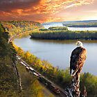 Eagle Domain Mississippi River by Randy & Kay Branham