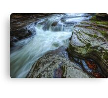 The Main Attraction Canvas Print