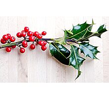 Holly with red berries Photographic Print
