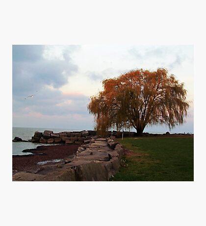 Edgewater Park Photographic Print