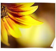 yellow. Poster