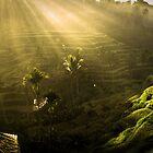 Samsara by AbbottPhotoArts
