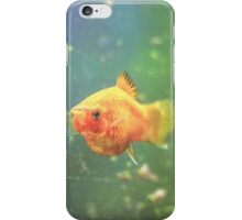Golden Fish iPhone Case/Skin
