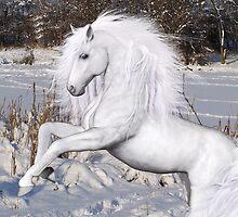 Winter Wonderland by LoneAngel