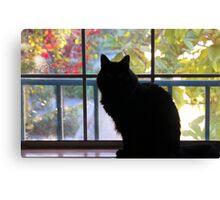 Pooh Bear In The Window Canvas Print