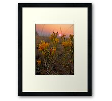 Offering in the smoke Framed Print