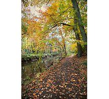 Along the Rivers Edge Photographic Print