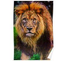 Lion, Rex Poster