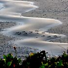 Rippling Footprints by trueblvr