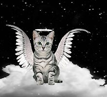 Tabby Angel Cat by Doreen Erhardt