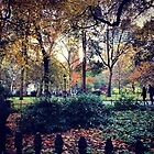Autumn New York Colors by SylviaS