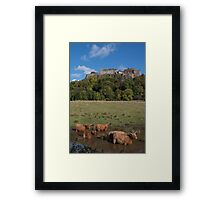 Coo's Below the Castle Framed Print