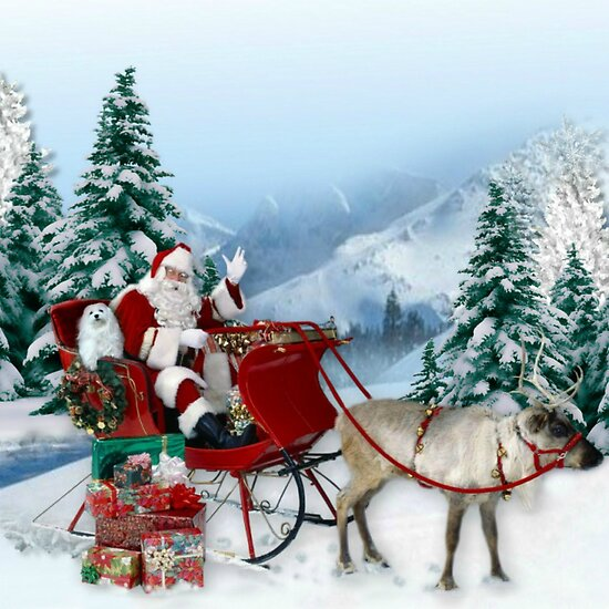 The Sleigh Ride ! by Morag Bates