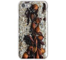 Kelp on beach iPhone Case/Skin