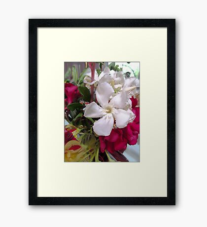 White and Red flowers for Christmas Framed Print
