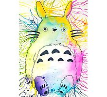 Pen and Ink Totoro Photographic Print