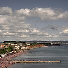 Dawlish air show  by Rob Hawkins