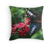 Butterfly On Red Flower Throw Pillow