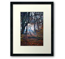 Chevin Forest Park #2 Framed Print