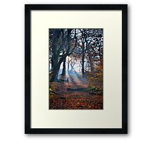 Chevin Forest Park #2 Framed Print