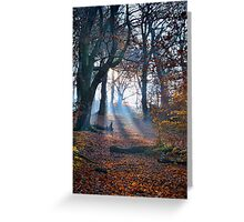 Chevin Forest Park #2 Greeting Card