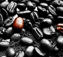 Coffee Beans SC by rom01
