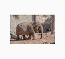 Young Asian Elephant Unisex T-Shirt