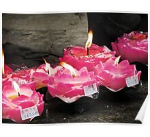 Lotus Candles  Poster