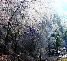 storm of ice  by LoreLeft27