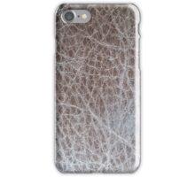 Meander 1 iPhone Case/Skin