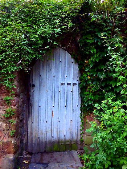 HIDDEN DOORWAY by Charmiene Maxwell-Batten