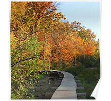 Autumn Walkway - Colorful Turn Poster