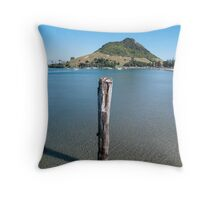 piles in the harbor Throw Pillow