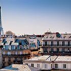 Paris Rooftops by Forrest Harrison Gerke