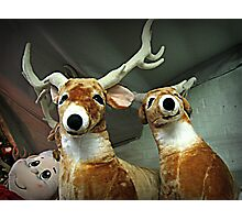 Reindeer Waiting For Christmas Eve Photographic Print